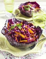 Krautsalat. Salat mit Rotkohl, Karotten, Zwiebeln und Rote Beete