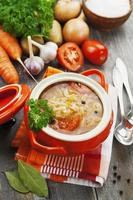 Kohlsuppe mit Fleisch foto
