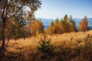 Felsmassiv in den Karpaten foto