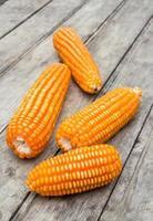 getrockneter Mais auf altem hölzernen Hintergrund
