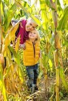 Porträt der glücklichen Mutter und des Kindes im Maisfeld foto