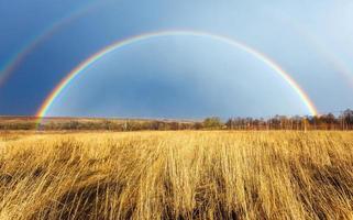 schöner voller Regenbogen über Bauernhoffeld im Frühjahr foto