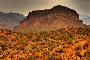 Wüstensturm nähert sich foto