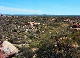 Wüstenlandschaft foto