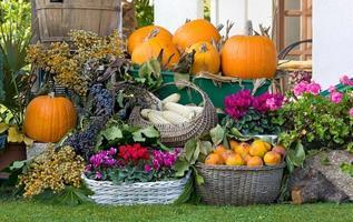 Zusammensetzung von Früchten und Blumen foto