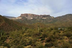 zwei Saguaros mit einer entfernten Mesa foto