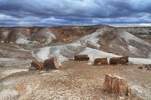 blaue Mesa, versteinerter Waldnationalpark,