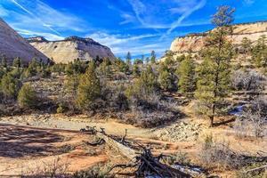 Schachbrett Mesa im Zion National Park
