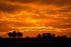 orange Sonnenuntergang mit einem bewölkten in den Feldern