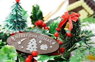 Weihnachtsverzierung im weißen Hintergrund