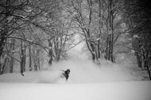 Snowboarden im herrlichen Tiefschnee im Wald foto