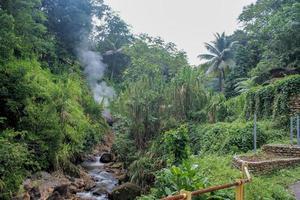 ursprüngliche Natur der Karibik foto