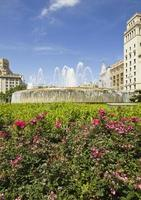 Blumen in Katalonien Platz. Barcelona, Spanien. foto