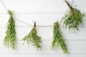 einzelne Zweige Thymian und Rosmarin