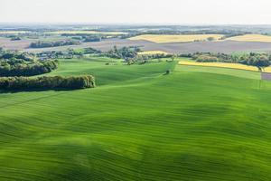 Luftaufnahme von gelben Erntefeldern