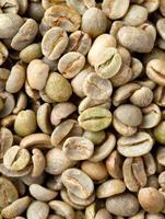 grüner Kaffee Hintergrund foto