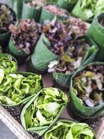 roher Salat foto
