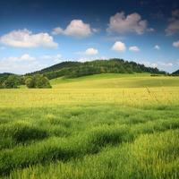 idyllische Landschaft foto