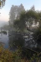 Herbstlandschaft foto