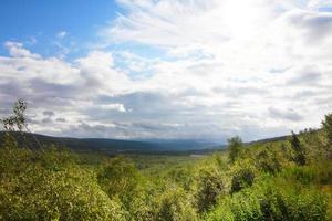 Landschaft mit Wald foto