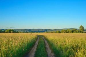 friedliche ländliche Sommerlandschaft foto