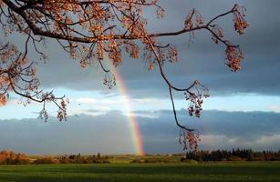 Landschaft mit Regenbogen foto