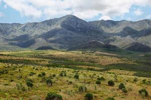 Berglandschaft in der Nähe von Oudtshoorn foto