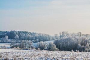 beruhigende Winterszene foto