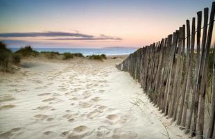 grasbewachsene Sanddünenlandschaft bei Sonnenaufgang foto