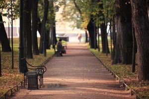 Gartenbank in der Herbstparklandschaft
