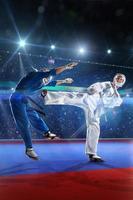 Zwei Kudo-Kämpfer kämpfen auf der großen Arena