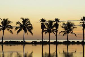 Sonnenaufgang in Miami foto