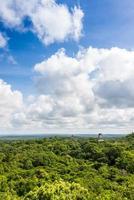 Panoramablick auf Regenwald und Maya-Ruinen. Tikal, Guatemala.