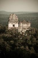 Tikal Maya Pyramiden foto