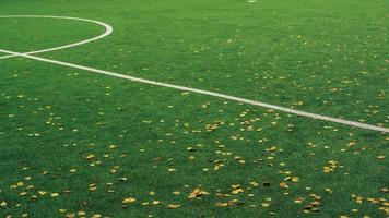 Teil des Fußballspielfeldes