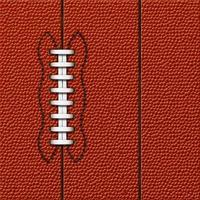 Fußball Hintergrund | sehr detaillierte Textur foto