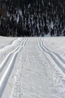 zweispuriges Skifahren