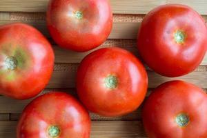 Tomaten. foto
