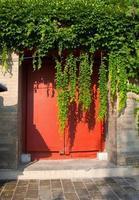 roter Tür Efeu wächst an der Wand foto