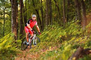 Biker, der auf Fahrrad in Holz reitet foto