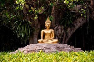 Buddha-Statue im Garten foto