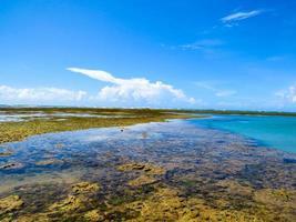 Seelandschaft foto