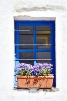 Fenster und weiß gestrichene Wand mit Blumen