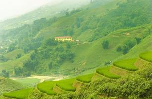 grünes terrassenförmig angelegtes Reisfeld in Sapa, Lao Cai, Vietnam Nam foto