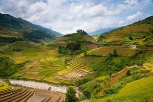 Reisterrassen in Vietnam foto