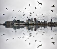 Tagesfotos von Toronto Ontario foto