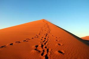 Sossusvlei Nationalpark foto