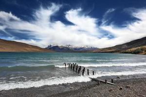verrückter Wind Patagonien