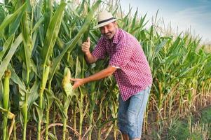 Farmer foto