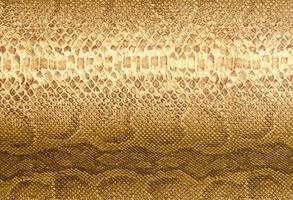 Schlangenhaut Hintergrund foto